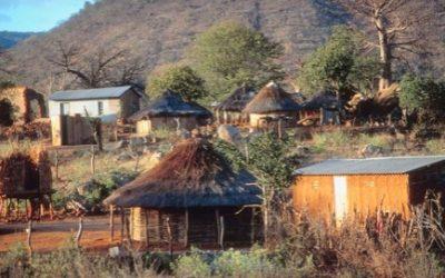 Le Miracle au pays de Zumba- Zimba